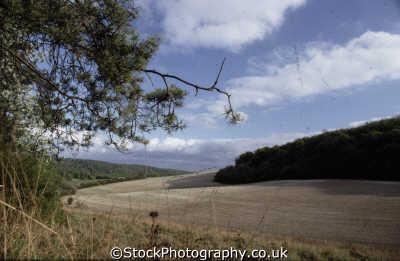arable farm land field oxfordshire rural britain countryside rustic pastoral environmental uk home counties england english angleterre inghilterra inglaterra united kingdom british
