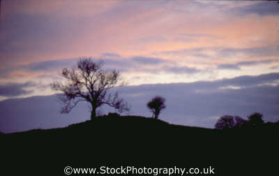 sunset tree hill sunsets dusk travel twilight nightfall cyprus europe european cypriot