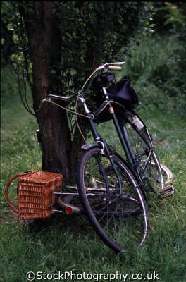 bikes resting tree bicycles cycling cyclists transport transportation uk cycles pedals handlebar middlesex middx england english angleterre inghilterra inglaterra united kingdom british