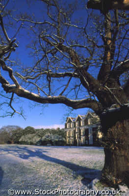 english country house winter snow oak tree seasons seasonal environmental uk jacobean mansion 1623 middlesex middx england angleterre inghilterra inglaterra united kingdom british