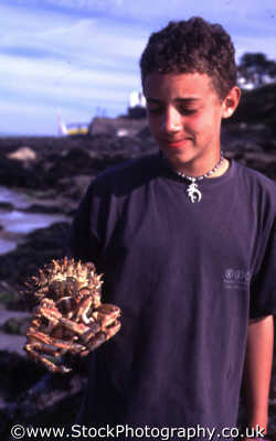 boy holding crab british beaches coastal coastline shoreline uk environmental devon devonian england english angleterre inghilterra inglaterra united kingdom