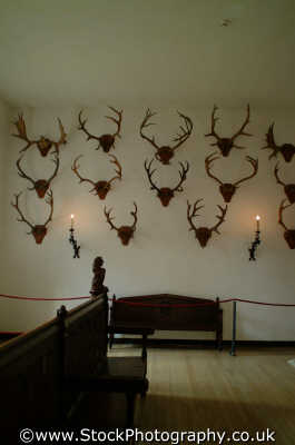 antler room hampton court royal palaces royalty stately homes british architecture architectural buildings uk trophy trophies hunt hunting bloodsports middlesex middx england english angleterre inghilterra inglaterra united kingdom