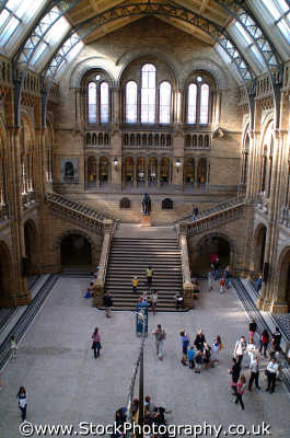 natural history museum stairway kensington famous sights london capital england english uk learning knowledge academic chelsea cockney angleterre inghilterra inglaterra united kingdom british