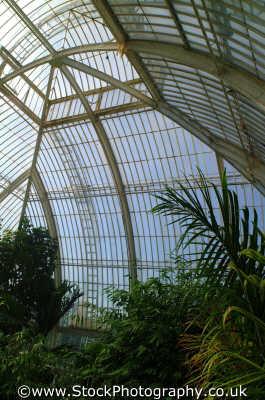 structure palm house kew gardens botanical botany london parks capital england english uk hot richmond cockney angleterre inghilterra inglaterra united kingdom british