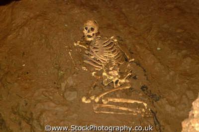 skeleton cheddar gorge environmental uk bones dead death remains archeology excavate somerset england english angleterre inghilterra inglaterra united kingdom british