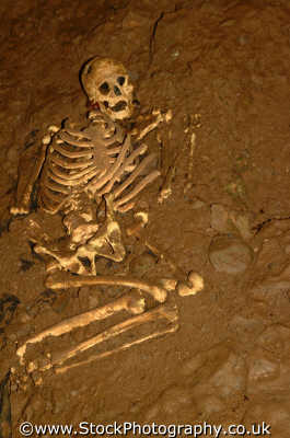 skeleton buried cheddar gorge tourist attractions england english uk bones dead death remains archeology excavate somerset angleterre inghilterra inglaterra united kingdom british