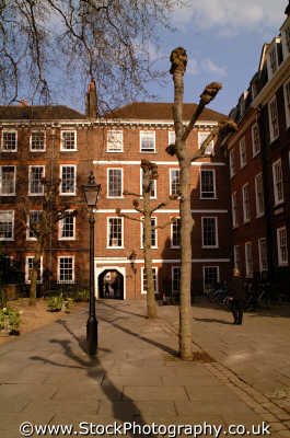 grays inn topped trees wc1 law courts buildings architecture london capital england english uk legal barristers solicitors chambers city cockney angleterre inghilterra inglaterra united kingdom british