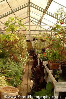 greenhouse unusual british buildings strange wierd uk horticulture england english angleterre inghilterra inglaterra united kingdom