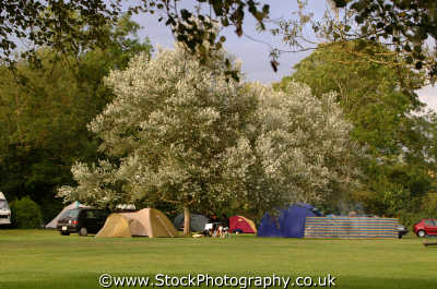 campsite leisure uk tents camping campers wiltshire wilts england english angleterre inghilterra inglaterra united kingdom british