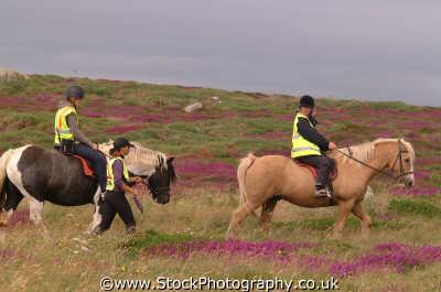 pony trekking sports sporting uk riding equestrian ponies cornwall cornish england english angleterre inghilterra inglaterra united kingdom british