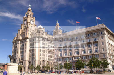 liver building liverpool north west northwest england english uk scouse liverpudlian merseyside angleterre inghilterra inglaterra united kingdom british