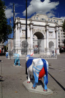 marble arch cows famous sights london capital england english uk art westminster cockney angleterre inghilterra inglaterra united kingdom british