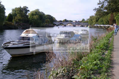 riverbank moored boats richmond thames london capital england english uk towpath surrey angleterre inghilterra inglaterra united kingdom british