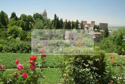 alhambra palace granada andalucia spanish espana european travel spain spanien españa espagne la spagna europe