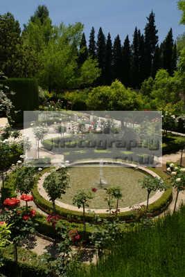 generalife gardens alhambra palace granada andalucia spanish espana european travel spain spanien españa espagne la spagna europe