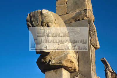 statue horse head persepolis takt-e takt e takte jamshid iran iranian persian asian travel persia historic site ruins carving asia islamic republic