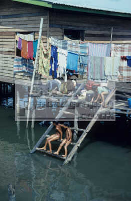 boys swim. mengkabong water village stilts sea sabah borneo. malaysia. badjao tau-laut tau laut taulaut gypsies villages known kampong ayer travel borneo malaysia asia malaysian