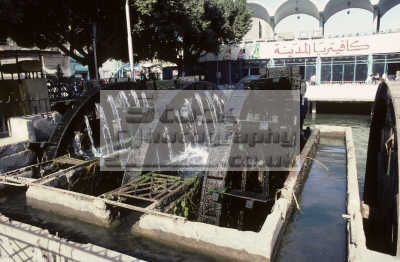 water wheel fayoum egypt african travel agriculture agricultural pharoh middle east egyptian