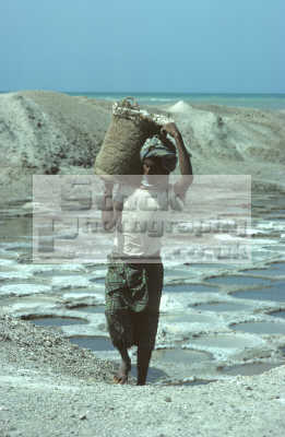 man carrying salt evaporated pans seawater yachtil near mokha red sea coast yemen. indiginous people african travel yemen africa yemeni