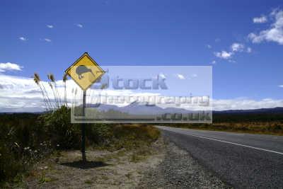 kiwi sign new zealand pacific travel oceanic sea oceans