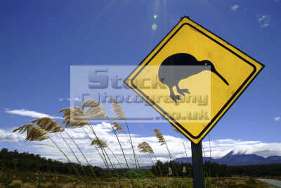 kiwi sign new zealand pacific travel oceanic sea oceans