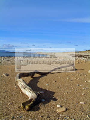 piece driftwood washed ashore sandy beach west coast arran views water mull kintyre british beaches coastal coastline shoreline uk environmental isle highlands islands scotland scottish scotch scots escocia schottland united kingdom