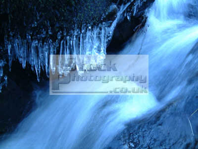 freezing cold water tumbles roars river scaur spray collects freezes form small icicles boulders geology geological science misc. winter ice icicle roaring scotland dumfries galloway dumfrieshire dumfriesshire scottish scotch scots escocia schottland united kingdom british