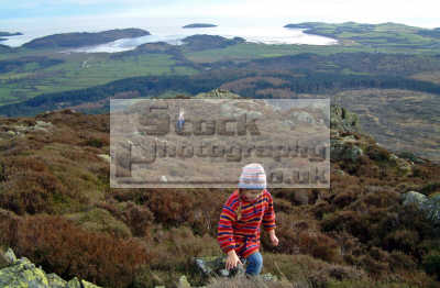 children scramble summit screel hill near castle douglas dumfries galloway hestan island balcary bay background moorland countryside rural environmental uk action activity kids climbing dumfrieshire dumfriesshire scotland scottish scotch scots escocia schottland united kingdom british