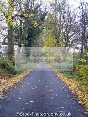autumnal image long straight uphill road dalwhat glen moniaive seasons seasonal environmental uk dumfries galloway dumfrieshire dumfriesshire scotland scottish scotch scots escocia schottland united kingdom british
