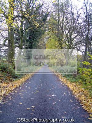 autumnal image long straight uphill road dalwhat glen moniaive seasons seasonal environmental uk dumfries galloway dumfrieshire dumfriesshire scotland scottish scotch scots escocia schottland united kingdom british