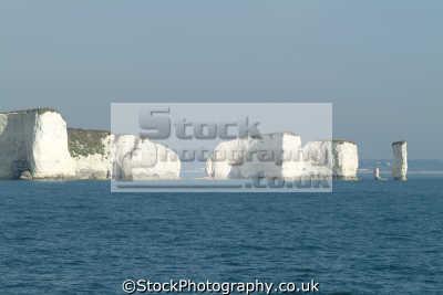 swanage bay pinnacles old harry handfast point uk coastline coastal environmental chalk sea stack cliffs purbeck dorset england english great britain united kingdom british