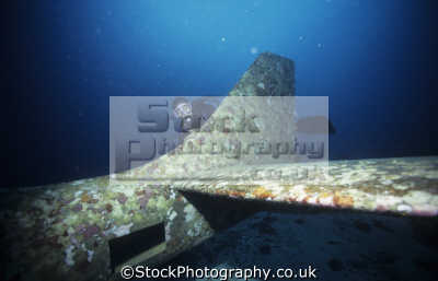 aircraft wreck hull lancair kit plane panagsama beach moalboal cebu island visayas philippines pacific ocean. wrecks seascapes scenery scenic underwater marine diving sudan africa philippino