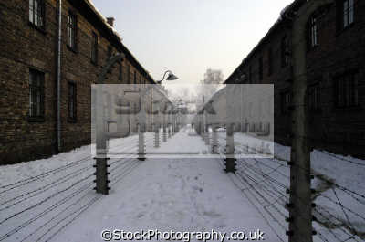 auschwitz barbed wire fences buildings nazi concentration camps genocide jews holocaust polish european travel poland polska europe