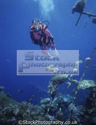 woman diving umbria wreck port sudan wingate reefs sudanese red sea. indian ocean wrecks seascapes scenery scenic underwater marine africa