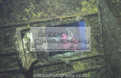 woman looking window bathroom bridge umbria wreck wrecks seascapes scenery scenic underwater marine diving sudan africa sudanese
