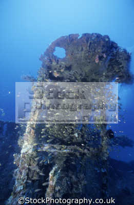 superstructure nanshin maru wreck black island coron palawan philippines pacific ocean wrecks seascapes scenery scenic underwater marine diving malaysia asia philippino