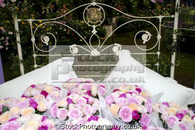 bed roses celebrities celebrity fame famous star people persons portraits united kingdom british