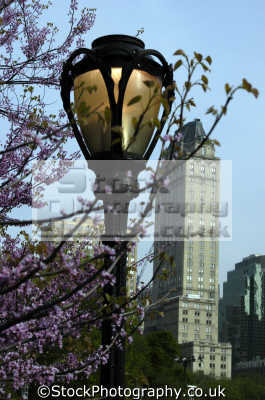 scenes central park new york usa. american yankee travel big apple usa united states america