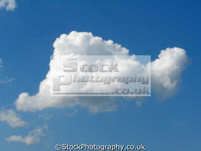 fluffy white cloud blue sky natural history nature misc. cumulus shower thermal updraught england english great britain united kingdom british