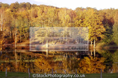 autumn reflections near corrèze limousin france. french landscapes european travel lake pond house tractor red russet gold correze france la francia frankreich europe