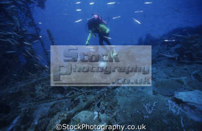 divers superstructure nanshin maru wreck growth black island coron palawan philippines pacific ocean. busuanga wrecks seascapes scenery scenic underwater marine diving calamian islands asia philippino