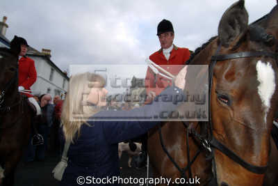 patting hunstmans horse fox hunting blood banned sports sporting uk helston cornwall cornish england english great britain united kingdom british