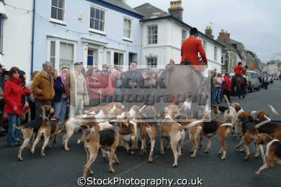 hunt leaving helston fox hunting blood banned sports sporting uk hounds canine cornwall cornish england english great britain united kingdom british