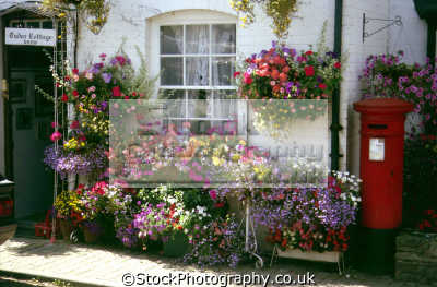 Wonderful display of flowers outside this house in Weobley