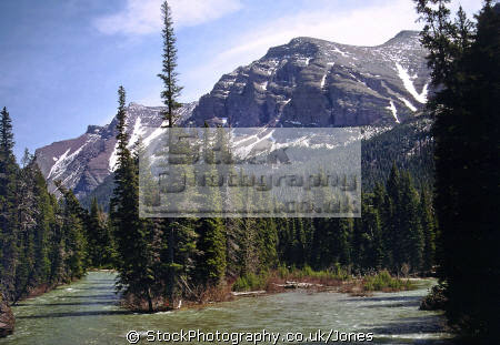saint mary falls glacier national park montana. wilderness natural history nature misc. river valley lake rockies mountain montana usa united states america american