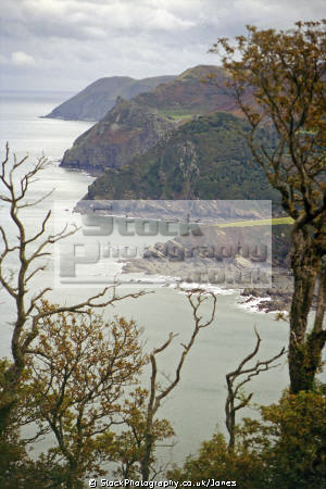 looking woody bay valley rocks countisbury hill devon. uk coastline coastal environmental exmoor lynton lynmouth lee abbey castle devon devonian england english great britain united kingdom british