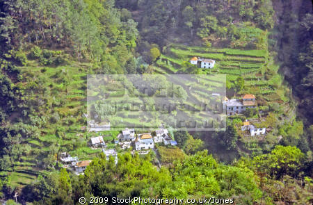 typical terraced valley madeira portuguese portugese european travel island serra agua farming homestead village hamlet ribeira brava pico madiera portugal europe