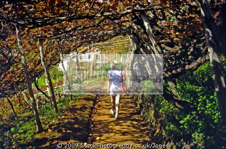 walking levadas madeira portuguese portugese european travel irrigation terrace terracing vines horizontal level water portugal island madiera europe
