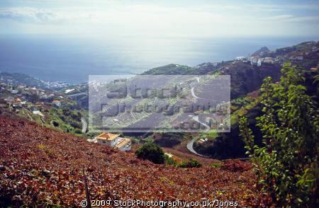 madeira view levada dos piornais. portuguese portugese european travel irrigation terrace terracing vines horizontal level water portugal island madiera europe