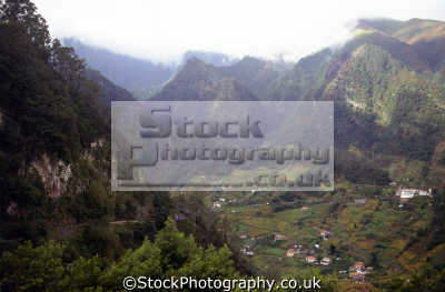 central madeira view mountain roads portuguese portugese european travel terrace terracing vines valley portugal island madiera europe